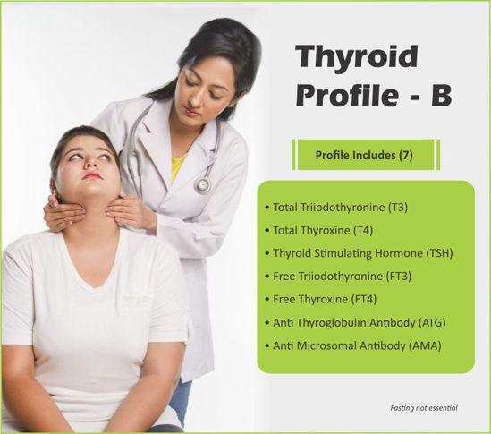 Thyroid Profile B